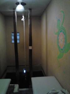 hot spring 002