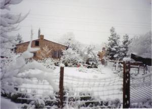 NM snow
