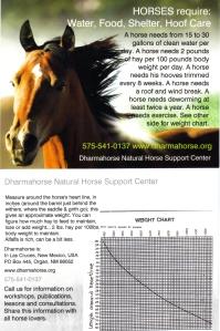 horse needs card